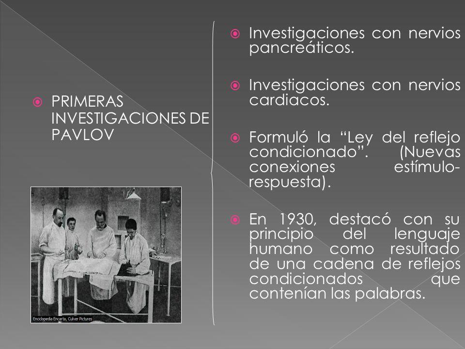 PRIMERAS INVESTIGACIONES DE PAVLOV Investigaciones con nervios pancreáticos. Investigaciones con nervios cardiacos. Formuló la Ley del reflejo condici