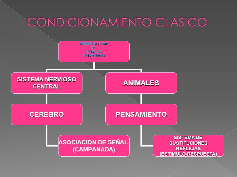 PRIMER SISTEMA DESEÑALES (EN PERROS) SISTEMA NERVIOSO CENTRAL CEREBRO ASOCIACION DE SEÑAL (CAMPANADA) ANIMALES PENSAMIENTO SISTEMA DE SUSTITUCIONESREF