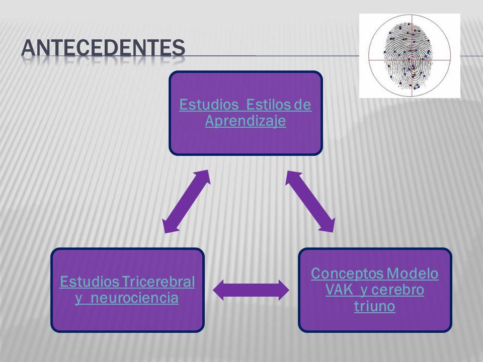 Estudios Estilos de Aprendizaje Conceptos Modelo VAK y cerebro triuno Estudios Tricerebral y neurociencia