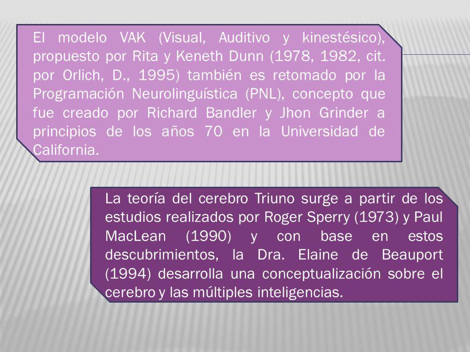El modelo VAK (Visual, Auditivo y kinestésico), propuesto por Rita y Keneth Dunn (1978, 1982, cit. por Orlich, D., 1995) también es retomado por la Pr