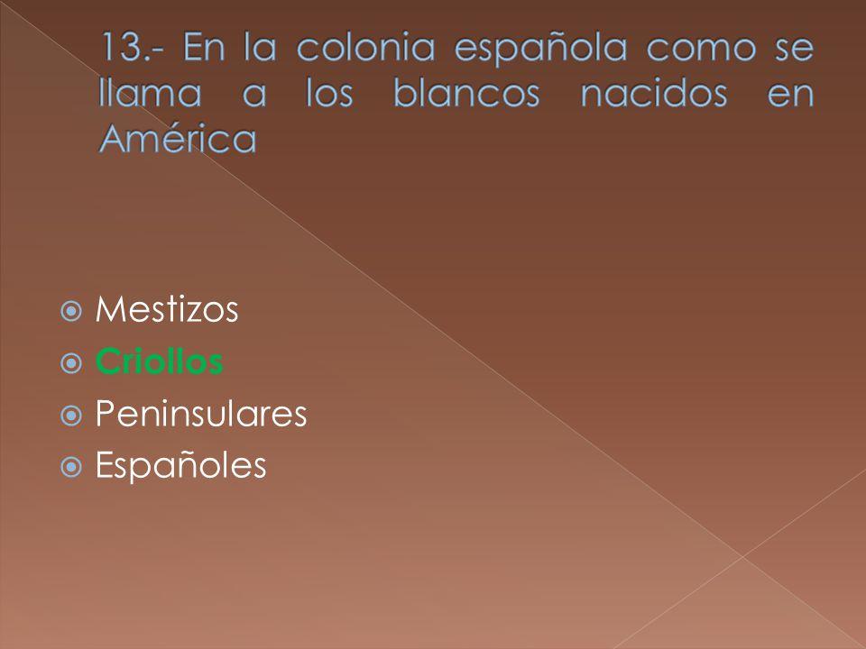 Mestizos Criollos Peninsulares Españoles
