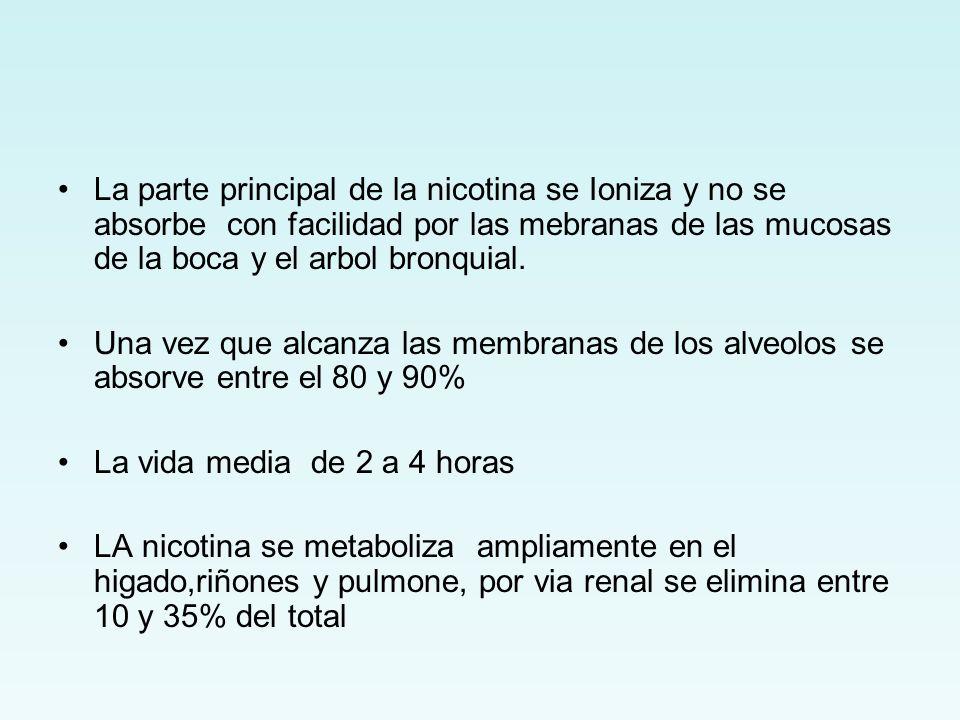 La parte principal de la nicotina se Ioniza y no se absorbe con facilidad por las mebranas de las mucosas de la boca y el arbol bronquial. Una vez que