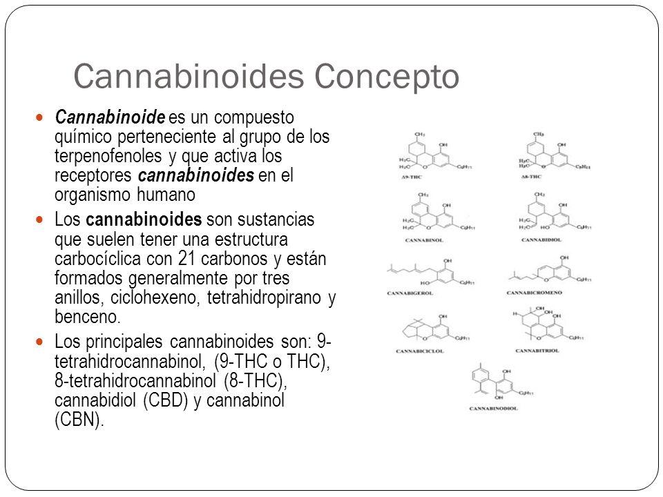 Cannabinoides Concepto Cannabinoide es un compuesto químico perteneciente al grupo de los terpenofenoles y que activa los receptores cannabinoides en