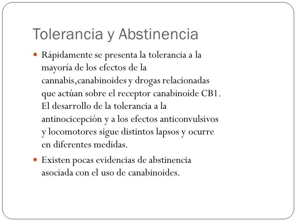 Tolerancia y Abstinencia Rápidamente se presenta la tolerancia a la mayoría de los efectos de la cannabis,canabinoides y drogas relacionadas que actúa