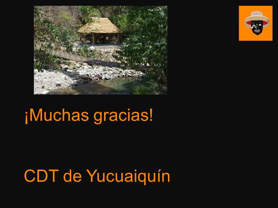 ¡Muchas gracias! CDT de Yucuaiquín