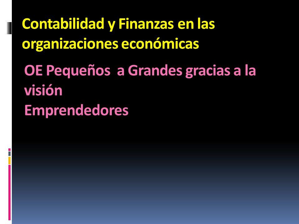 Contabilidad y Finanzas en las organizaciones económicas OE Pequeños a Grandes gracias a la visión Emprendedores