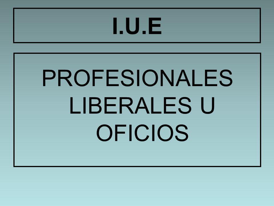I.U.E PROFESIONALES LIBERALES U OFICIOS