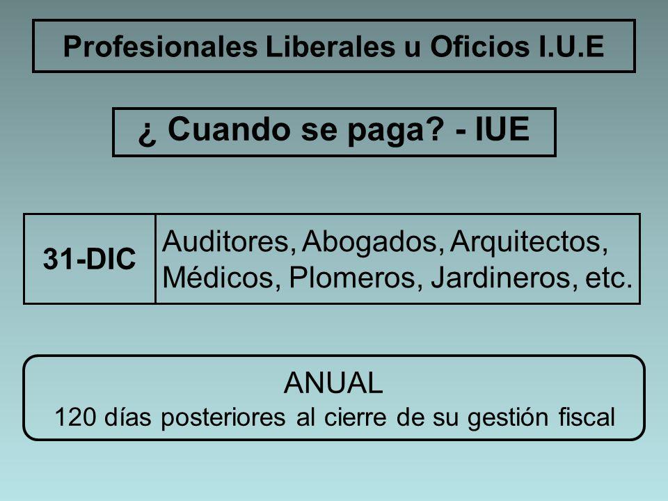 ¿ Cuando se paga? - IUE Profesionales Liberales u Oficios I.U.E Auditores, Abogados, Arquitectos, Médicos, Plomeros, Jardineros, etc. 31-DIC ANUAL 120