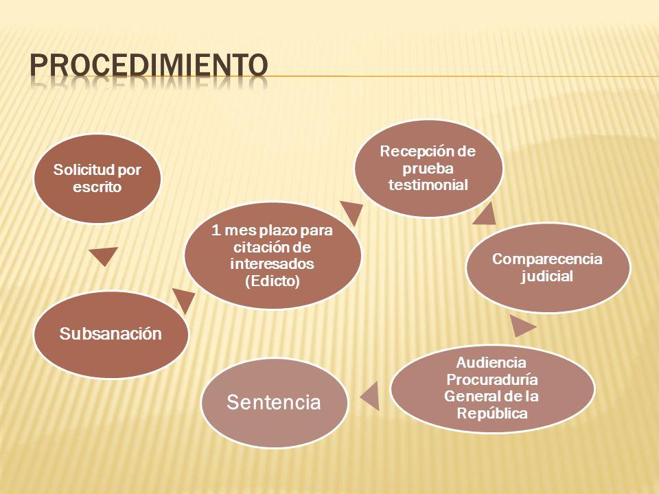 Solicitud por escrito Subsanación 1 mes plazo para citación de interesados (Edicto) Recepción de prueba testimonial Comparecencia judicial Audiencia P