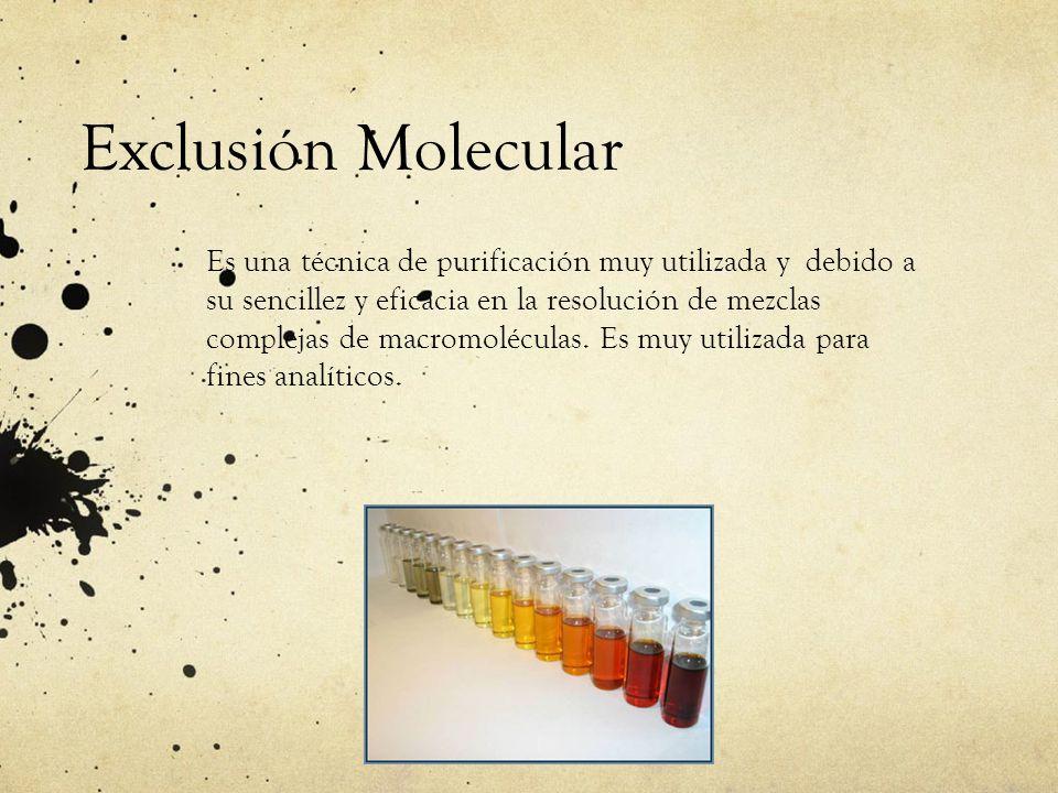 Exclusión Molecular Es una técnica de purificación muy utilizada y debido a su sencillez y eficacia en la resolución de mezclas complejas de macromolé