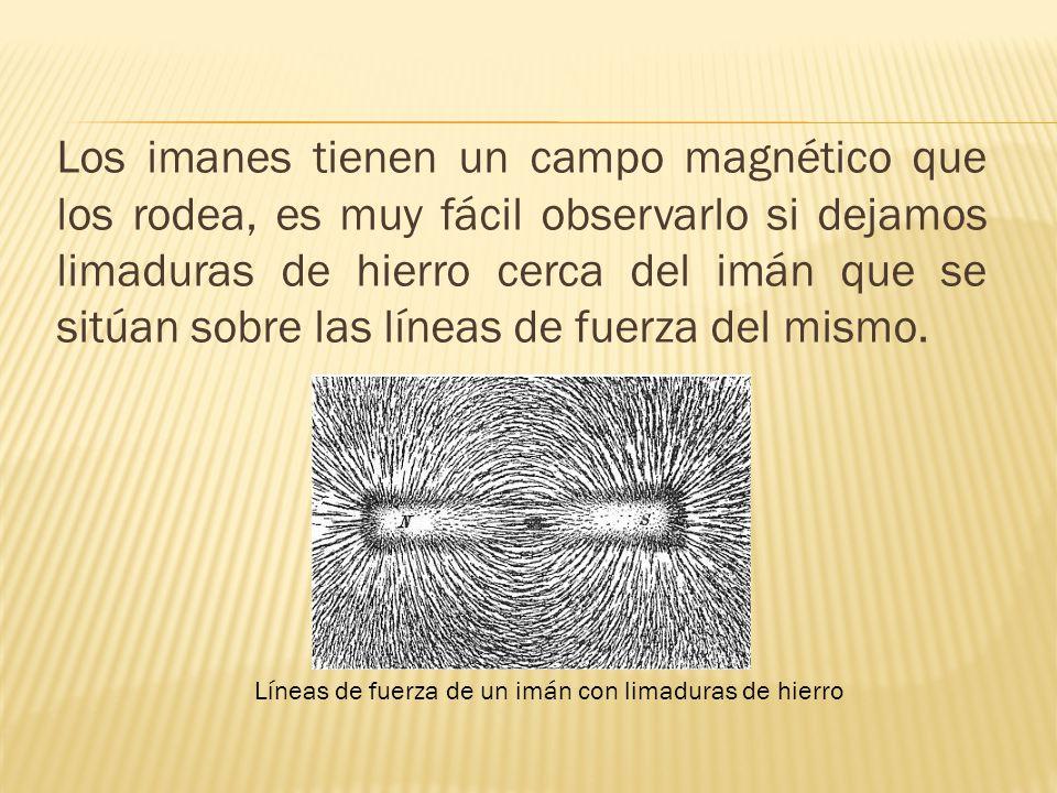 Los imanes tienen un campo magnético que los rodea, es muy fácil observarlo si dejamos limaduras de hierro cerca del imán que se sitúan sobre las líneas de fuerza del mismo.