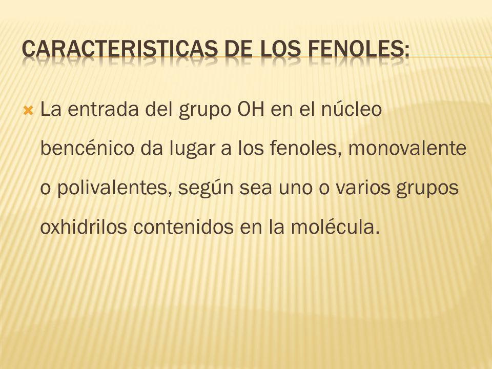 Fenoles: se emplean como desinfectantes, germicidas y en anestésicos locales.