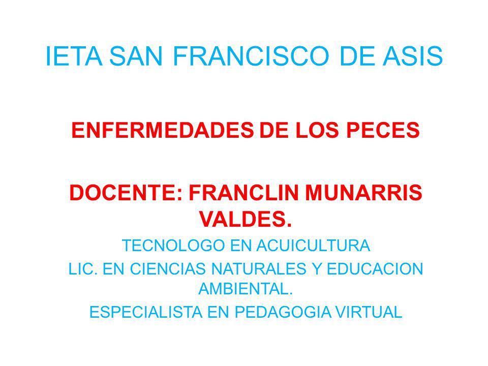 IETA SAN FRANCISCO DE ASIS ENFERMEDADES DE LOS PECES DOCENTE: FRANCLIN MUNARRIS VALDES. TECNOLOGO EN ACUICULTURA LIC. EN CIENCIAS NATURALES Y EDUCACIO
