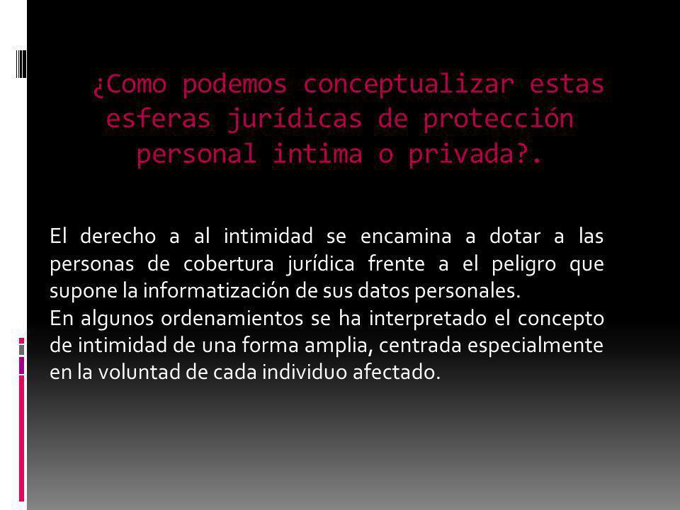 ¿Como podemos conceptualizar estas esferas jurídicas de protección personal intima o privada?. El derecho a al intimidad se encamina a dotar a las per