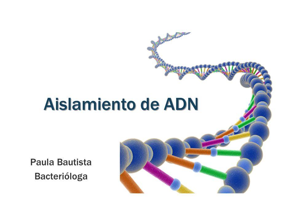 Aislamiento de ADN Paula Bautista Bacterióloga
