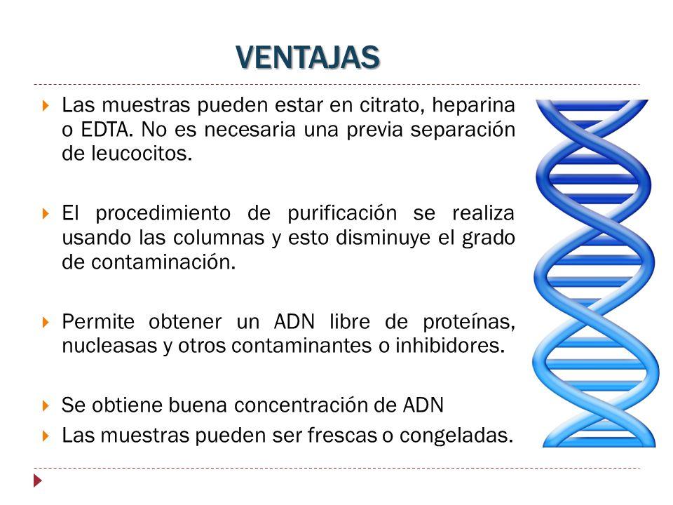Las muestras pueden estar en citrato, heparina o EDTA. No es necesaria una previa separación de leucocitos. El procedimiento de purificación se realiz