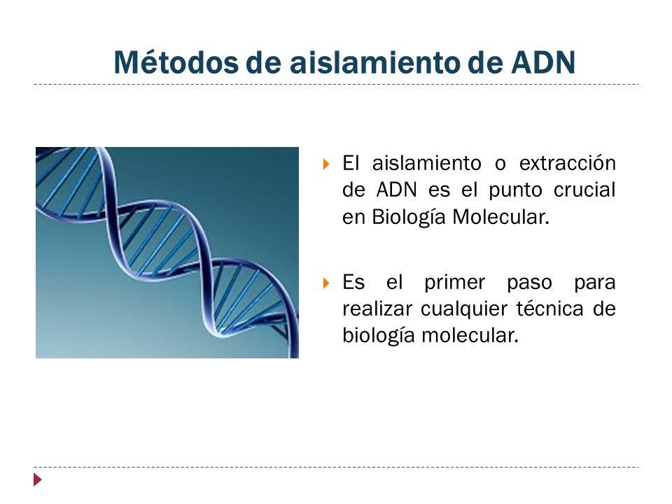 Métodos de aislamiento de ADN El aislamiento o extracción de ADN es el punto crucial en Biología Molecular. Es el primer paso para realizar cualquier