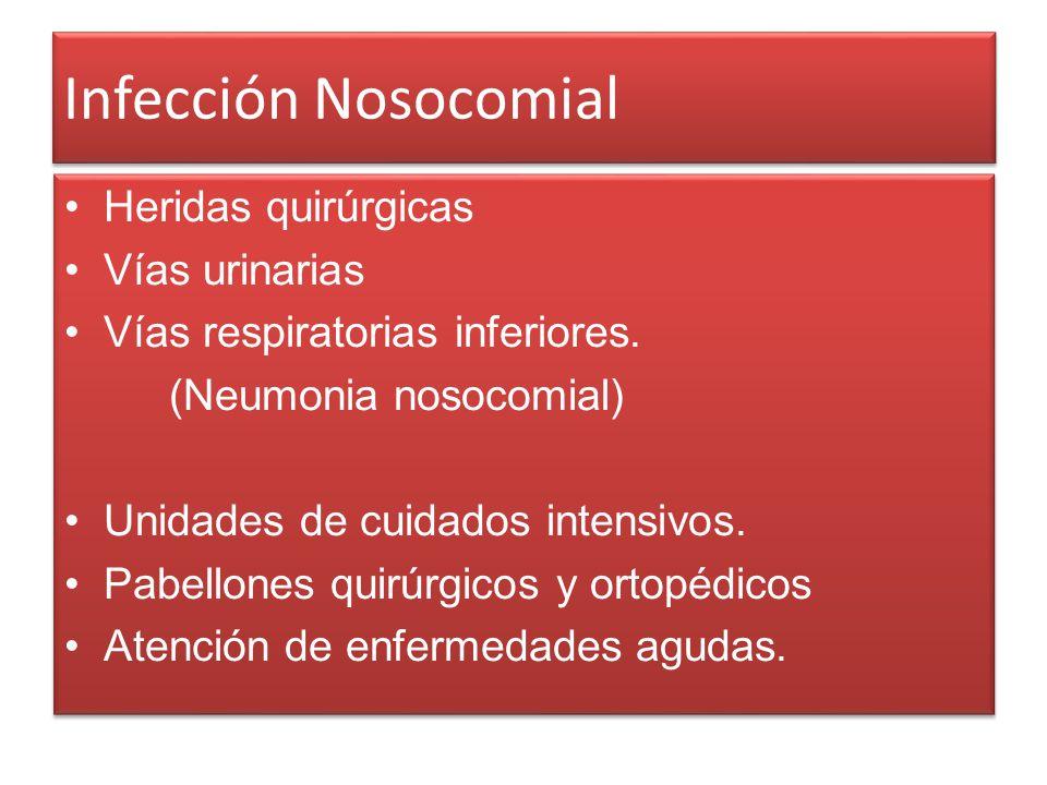 Infección Nosocomial Heridas quirúrgicas Vías urinarias Vías respiratorias inferiores. (Neumonia nosocomial) Unidades de cuidados intensivos. Pabellon