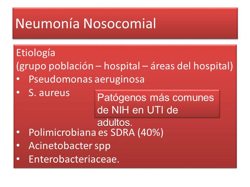Neumonía Nosocomial Etiología (grupo población – hospital – áreas del hospital) Pseudomonas aeruginosa S. aureus Polimicrobiana es SDRA (40%) Acinetob