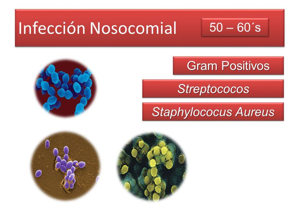 Infección Nosocomial Gram Positivos 50 – 60´s StreptococosStreptococos Staphylococus Aureus