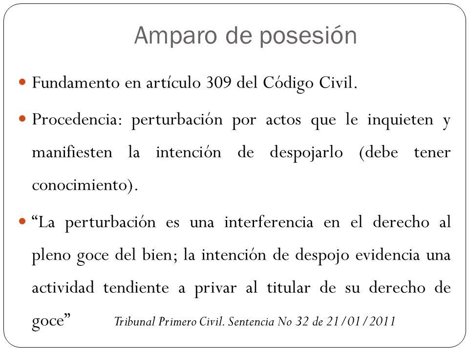Amparo de posesión Fundamento en artículo 309 del Código Civil. Procedencia: perturbación por actos que le inquieten y manifiesten la intención de des