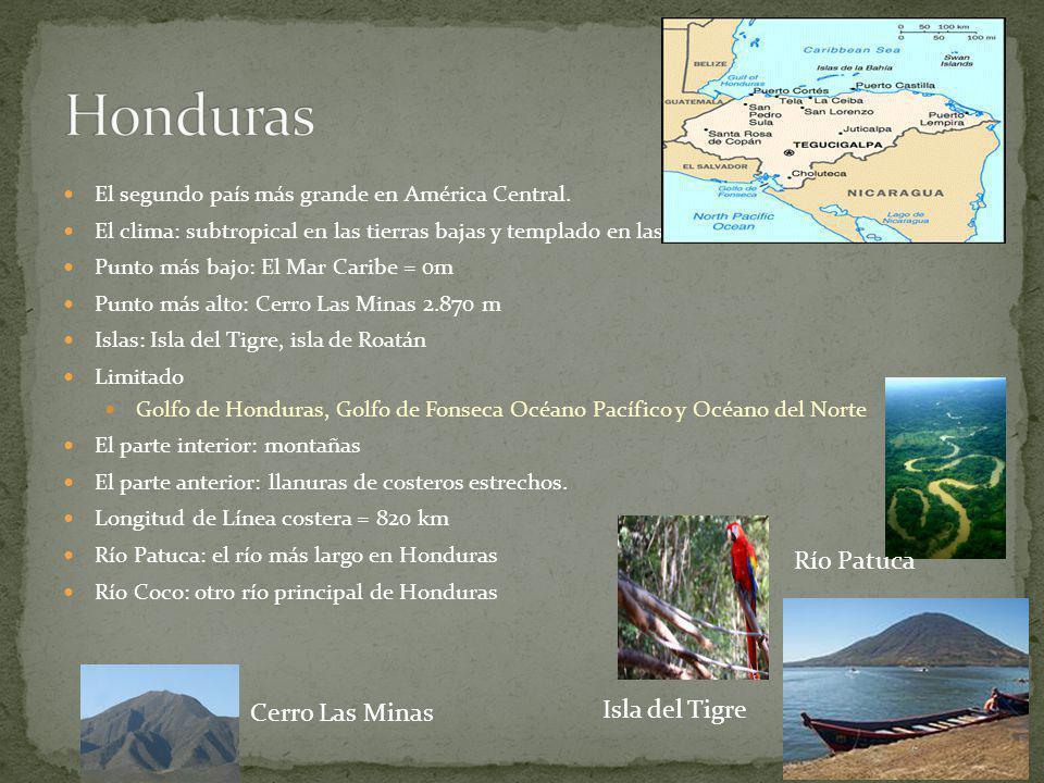Hay cadenas montañosas El país es ocupado por grandes llanuras Tiene junglas lluviosas con ríos Tiene tres cadenas montañosas: Cordillera Volcánica Ce
