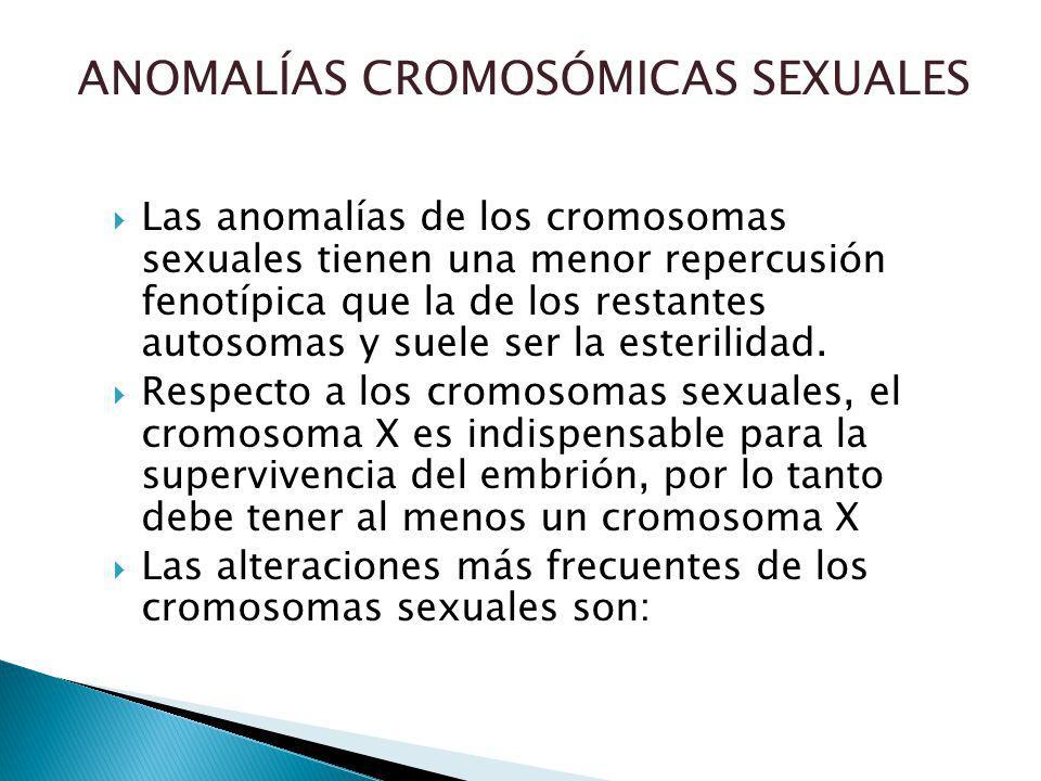 ANOMALÍAS CROMOSÓMICAS SEXUALES Las anomalías de los cromosomas sexuales tienen una menor repercusión fenotípica que la de los restantes autosomas y suele ser la esterilidad.