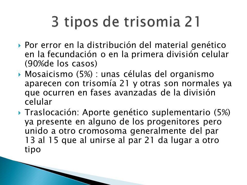 Por error en la distribución del material genético en la fecundación o en la primera división celular (90%de los casos) Mosaicismo (5%) : unas células