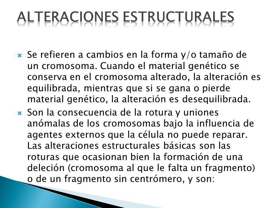 Se refieren a cambios en la forma y/o tamaño de un cromosoma. Cuando el material genético se conserva en el cromosoma alterado, la alteración es equil