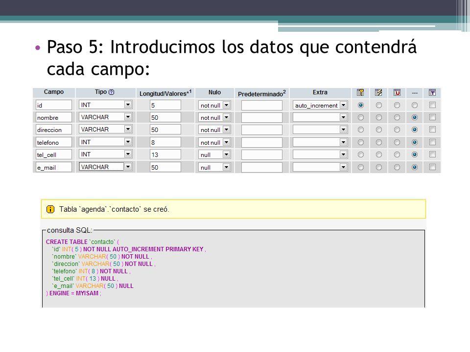 Paso 5: Introducimos los datos que contendrá cada campo: