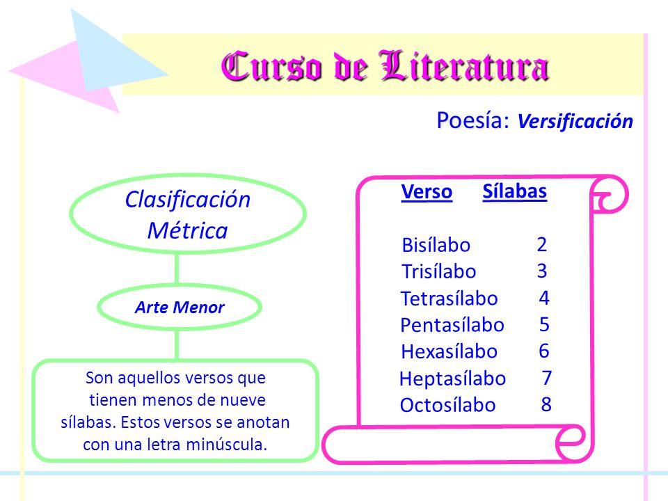 Curso de Literatura Poesía Poesía: Versificación Clasificación Métrica Son aquellos versos que tienen menos de nueve sílabas. Estos versos se anotan c