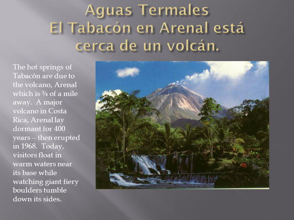 The hot springs of Tabacón are due to the volcano, Arenal which is ¾ of a mile away. A major volcano in Costa Rica, Arenal lay dormant for 400 yearsth