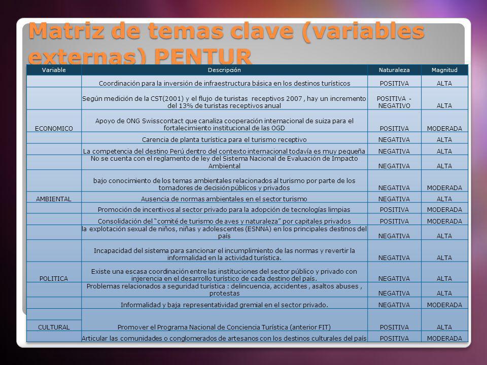 Matriz de temas clave (variables externas) PENTUR