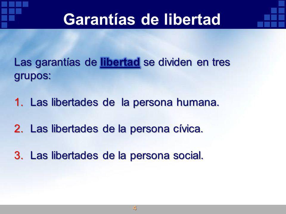 Garantías de libertad 4