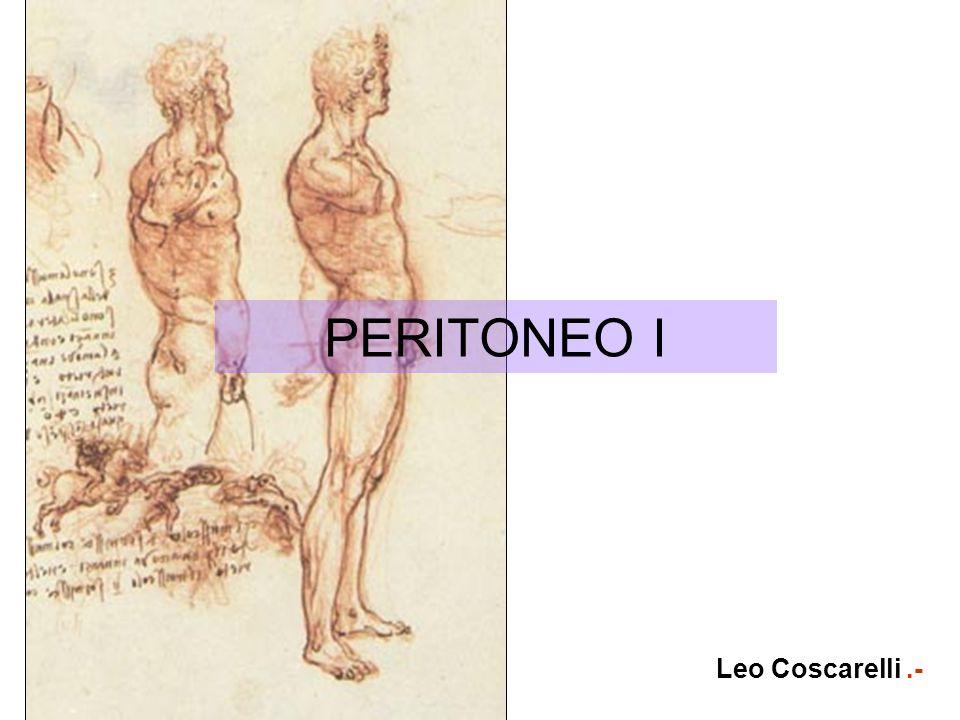 PERITONEO I Leo Coscarelli.-