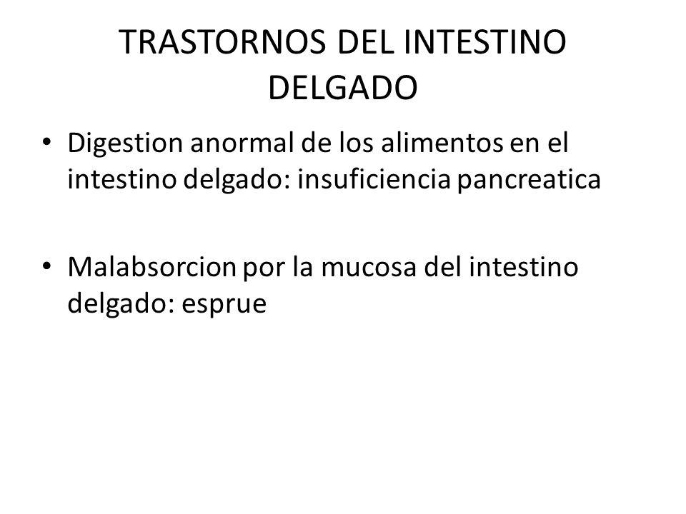 TRASTORNOS DEL INTESTINO DELGADO Digestion anormal de los alimentos en el intestino delgado: insuficiencia pancreatica Malabsorcion por la mucosa del