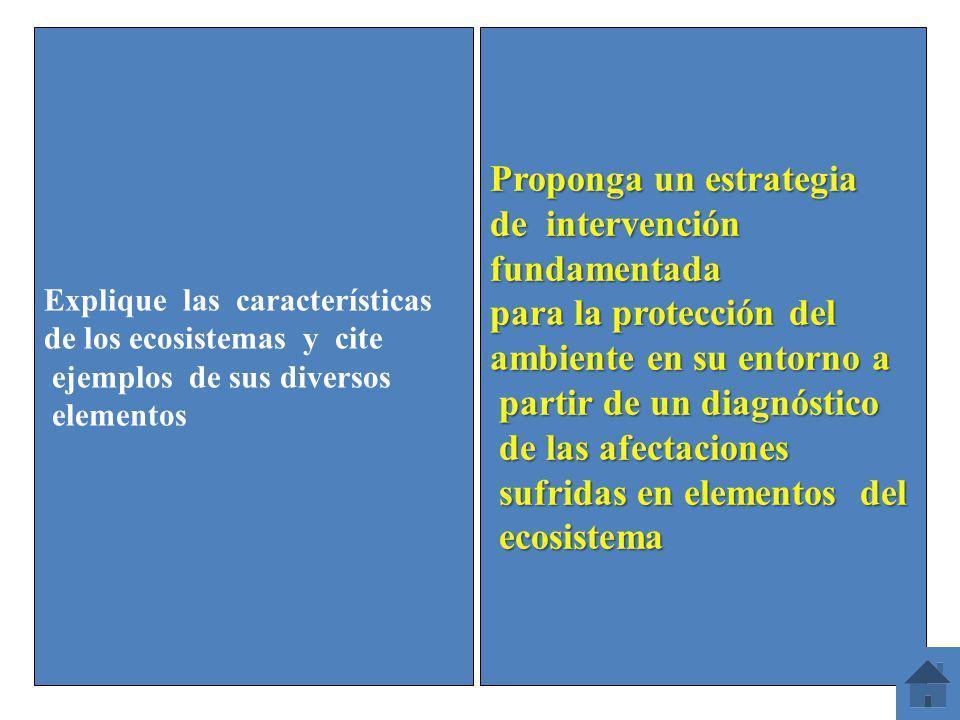 Explique las características de los ecosistemas y cite ejemplos de sus diversos elementos Proponga un estrategia de intervención fundamentada para la