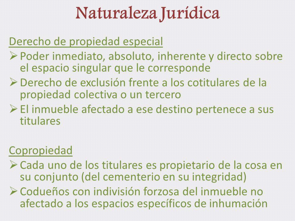Naturaleza Jurídica Derecho de propiedad especial Poder inmediato, absoluto, inherente y directo sobre el espacio singular que le corresponde Derecho