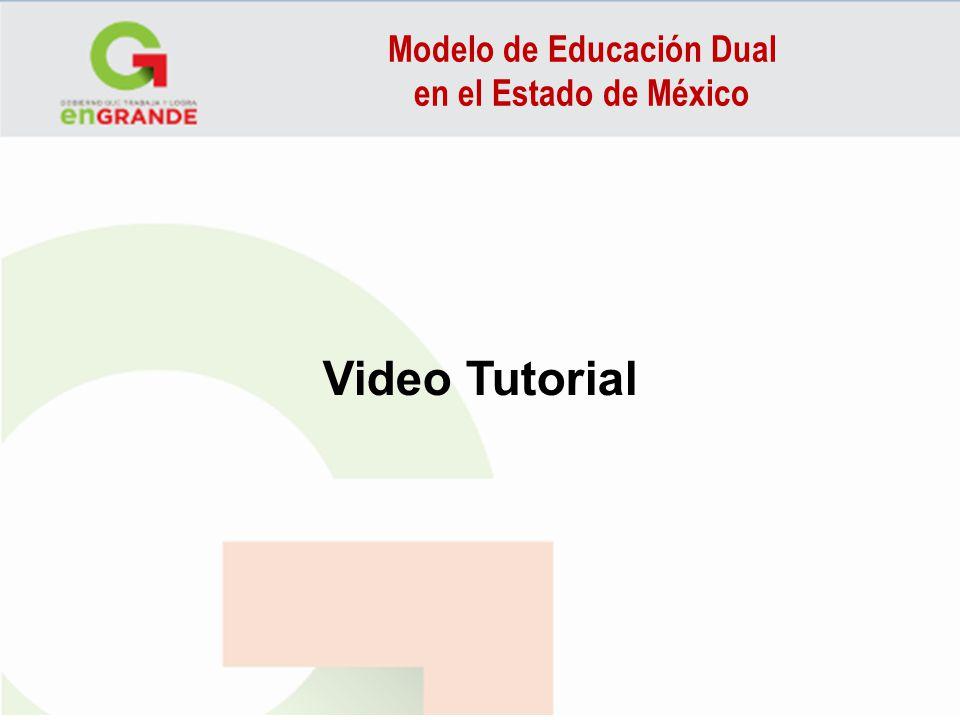 Modelo de Educación Dual en el Estado de México USE 2 Will to Express a Promise Will is usually used in promises.