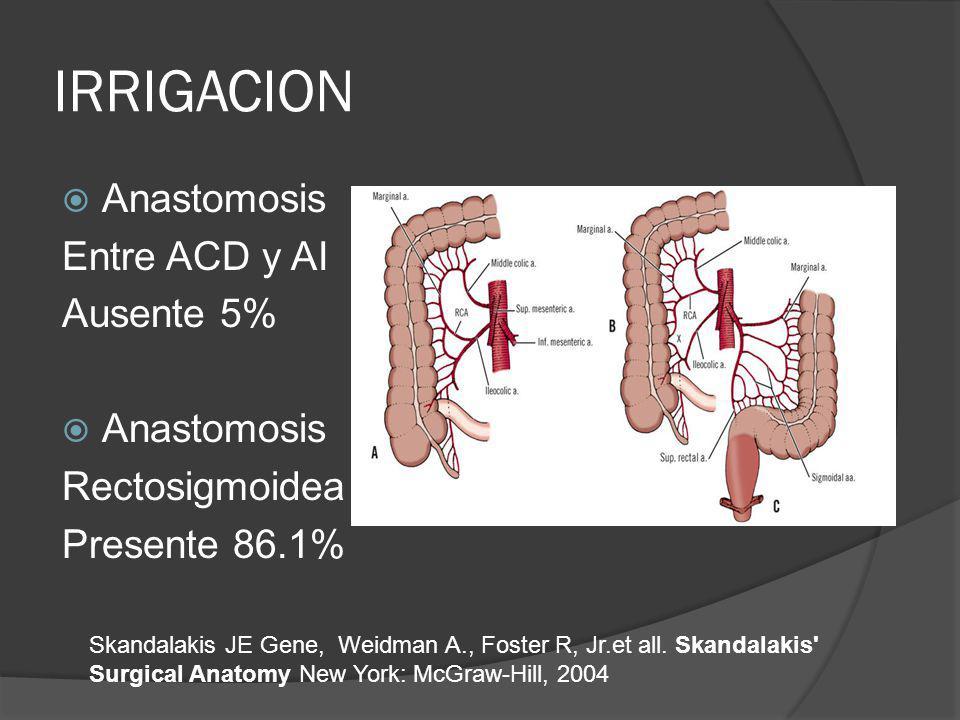 IRRIGACION Skandalakis JE Gene, Weidman A., Foster R, Jr.et all. Skandalakis' Surgical Anatomy New York: McGraw-Hill, 2004 Anastomosis Entre ACD y AI