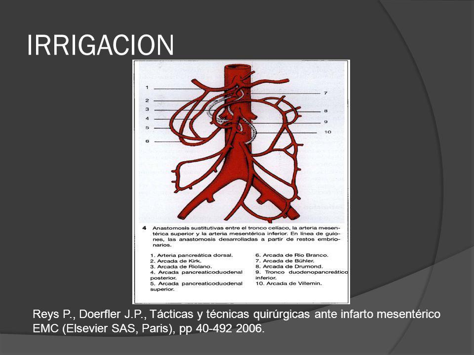 IRRIGACION Reys P., Doerfler J.P., Tácticas y técnicas quirúrgicas ante infarto mesentérico EMC (Elsevier SAS, Paris), pp 40-492 2006.