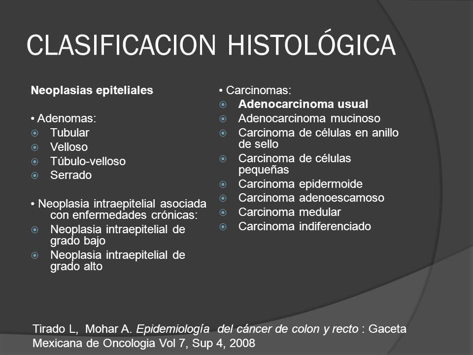 CLASIFICACION HISTOLÓGICA Neoplasias epiteliales Adenomas: Tubular Velloso Túbulo-velloso Serrado Neoplasia intraepitelial asociada con enfermedades c