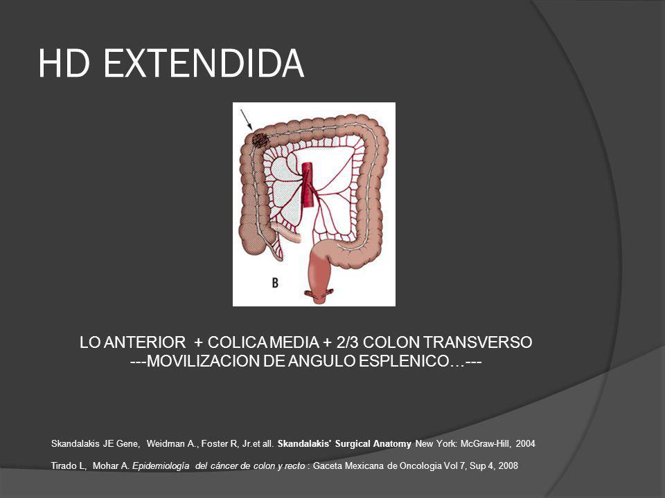 HD EXTENDIDA LO ANTERIOR + COLICA MEDIA + 2/3 COLON TRANSVERSO ---MOVILIZACION DE ANGULO ESPLENICO…--- Skandalakis JE Gene, Weidman A., Foster R, Jr.et all.