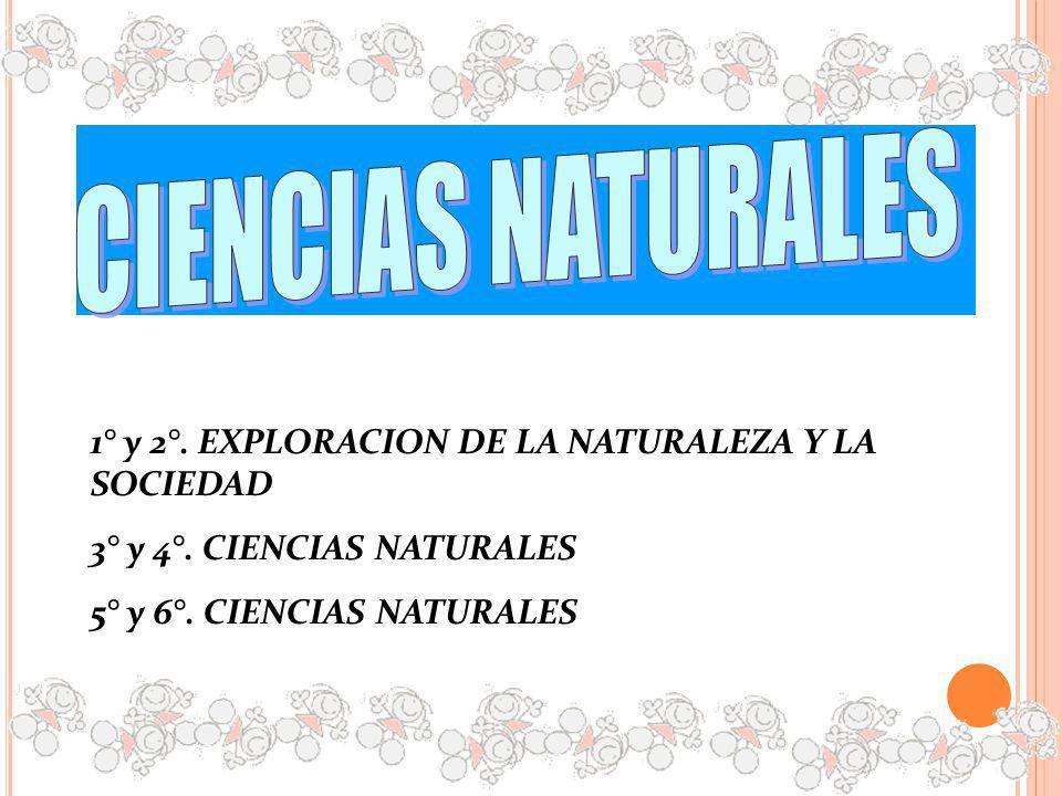 1° y 2°. EXPLORACION DE LA NATURALEZA Y LA SOCIEDAD 3° y 4°. CIENCIAS NATURALES 5° y 6°. CIENCIAS NATURALES