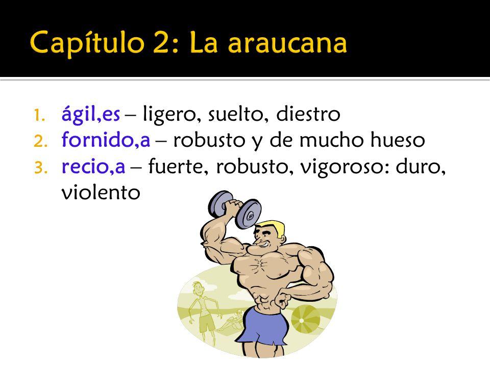 1. ágil,es – ligero, suelto, diestro 2. fornido,a – robusto y de mucho hueso 3. recio,a – fuerte, robusto, vigoroso: duro, violento