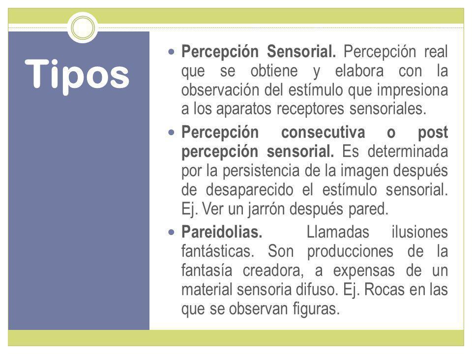 Tipos Percepción Sensorial.