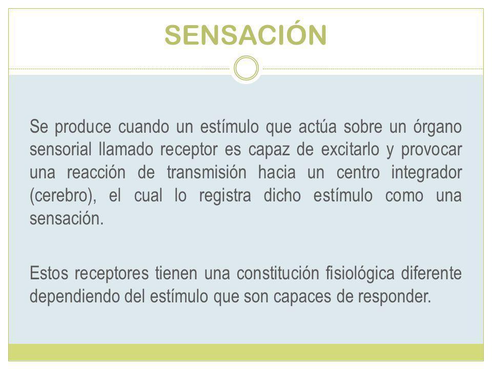 SENSACIÓN Se produce cuando un estímulo que actúa sobre un órgano sensorial llamado receptor es capaz de excitarlo y provocar una reacción de transmisión hacia un centro integrador (cerebro), el cual lo registra dicho estímulo como una sensación.