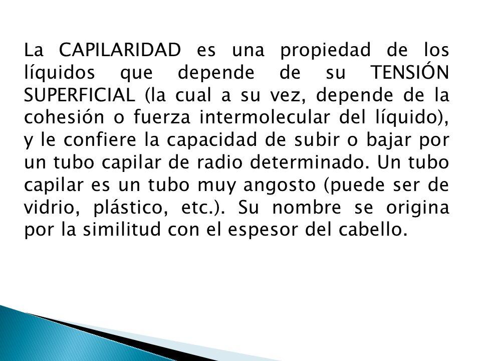 La CAPILARIDAD es una propiedad de los líquidos que depende de su TENSIÓN SUPERFICIAL (la cual a su vez, depende de la cohesión o fuerza intermolecula