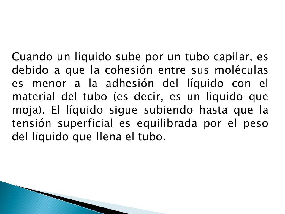 Cuando un líquido sube por un tubo capilar, es debido a que la cohesión entre sus moléculas es menor a la adhesión del líquido con el material del tub