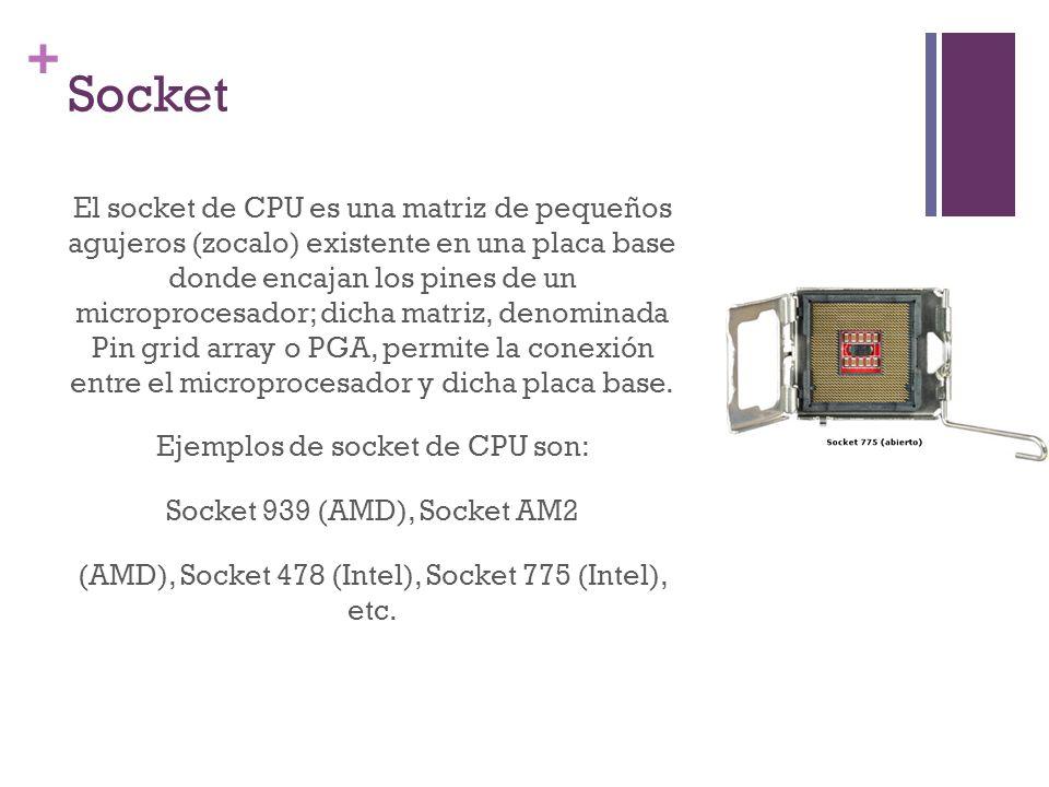 + Socket El socket de CPU es una matriz de pequeños agujeros (zocalo) existente en una placa base donde encajan los pines de un microprocesador; dicha